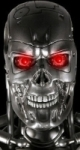 California's Terminator eyes budget cuts